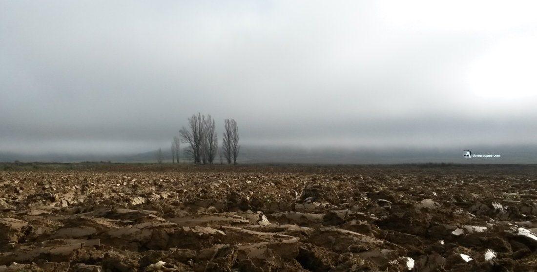 Durius Aquae: tierras de Villabrágima