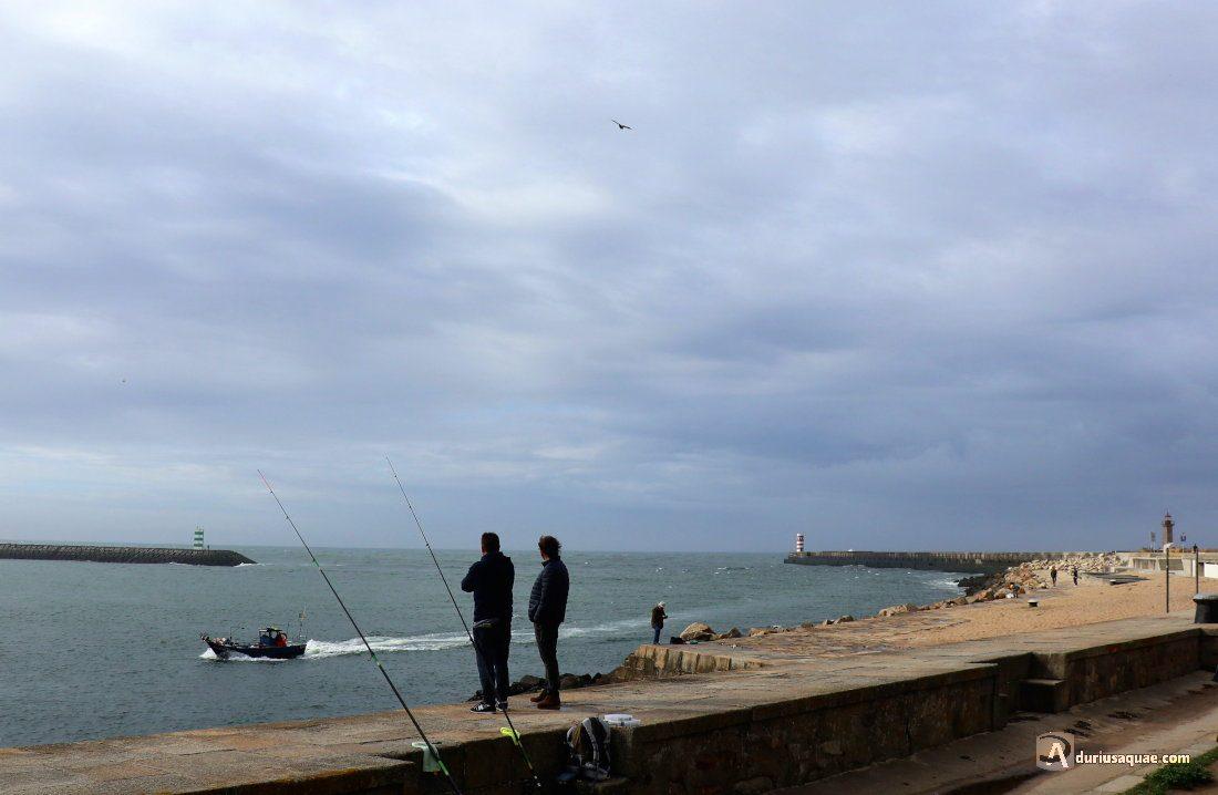 Durius Aqaue: Estuario en Foz do Douro