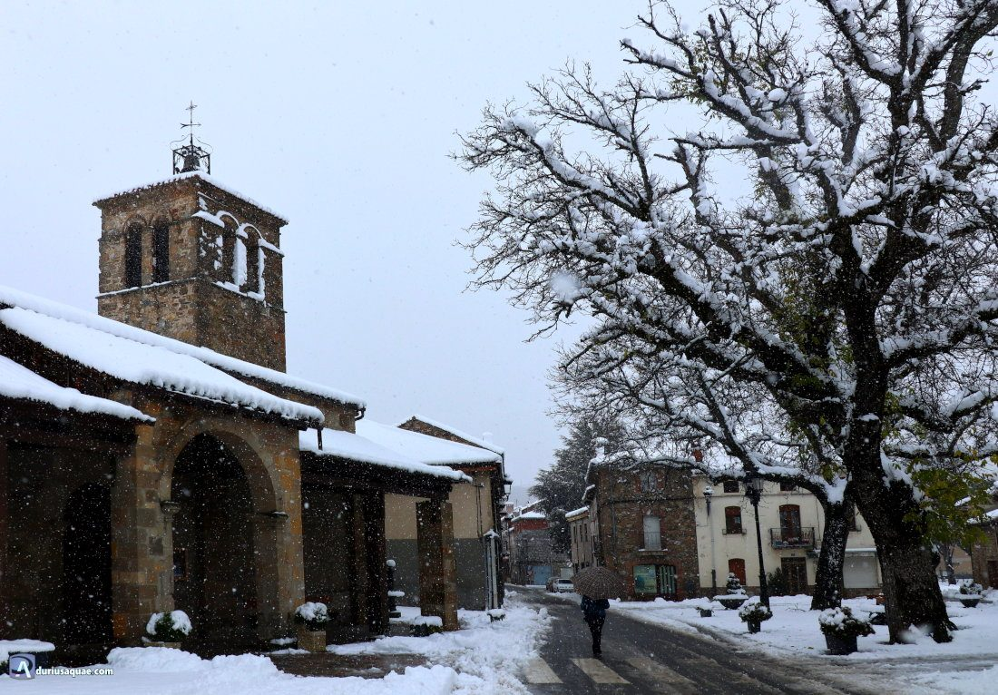 Iglesia y nogales de Velilla del río Carrión