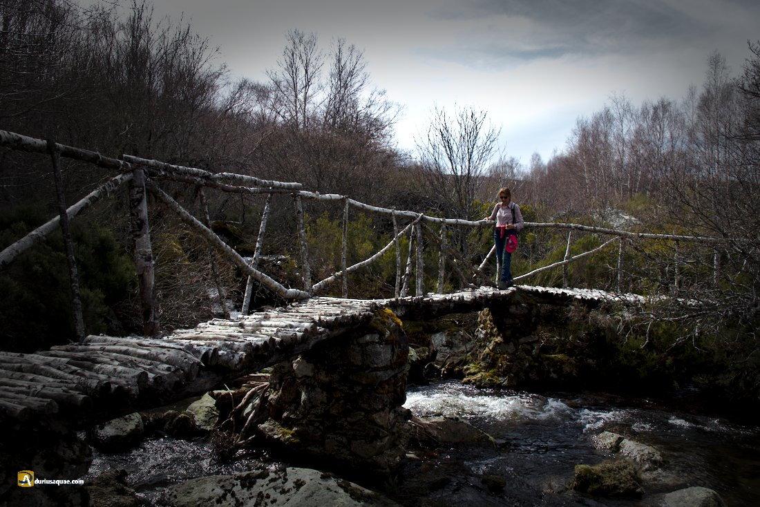 Puente de abedul en Sotillo de Sanabria