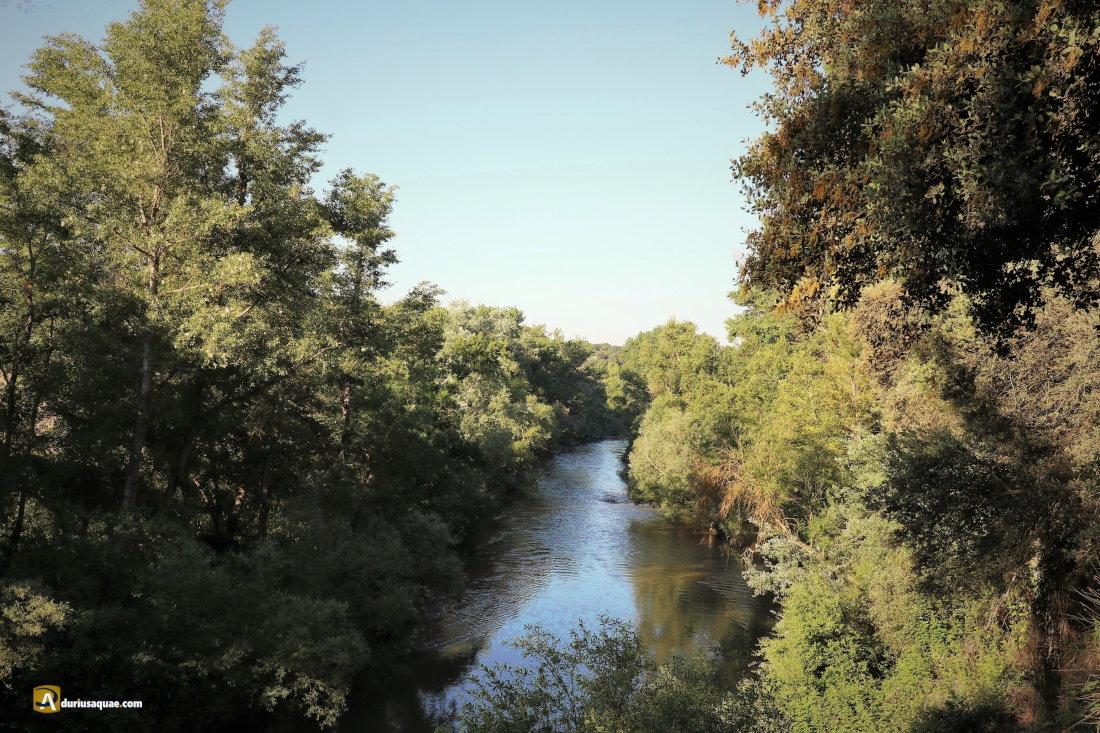 Duero cerca de El Castillejo