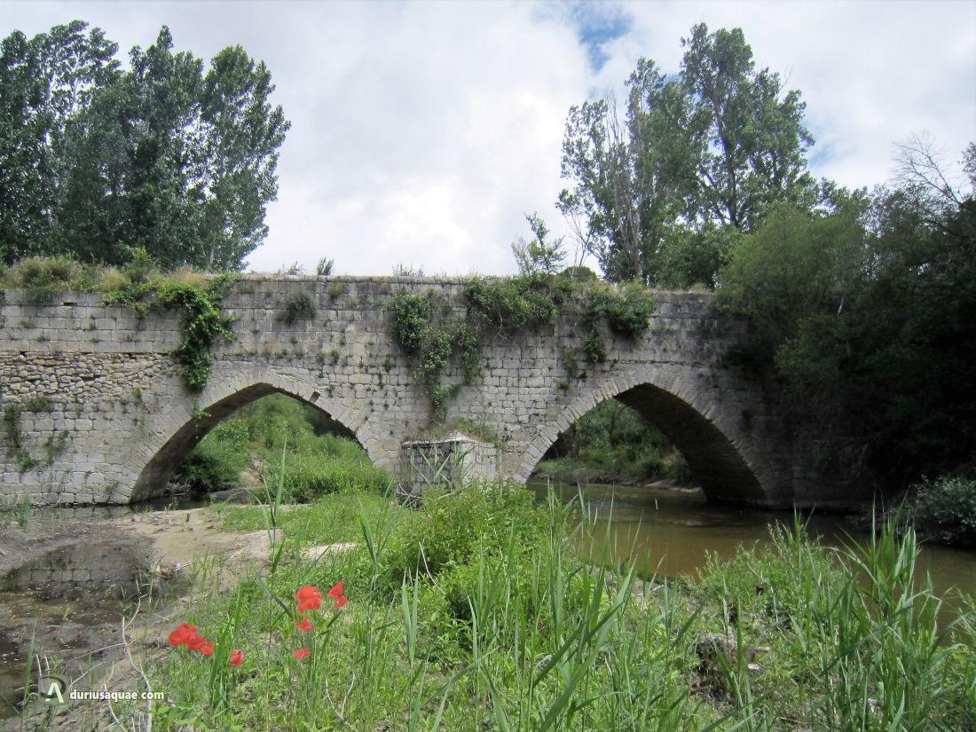 Puente Mediana
