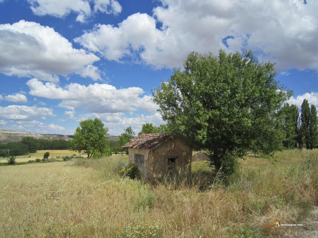 Durius Aqaue: Cañada en Fuentemolinos