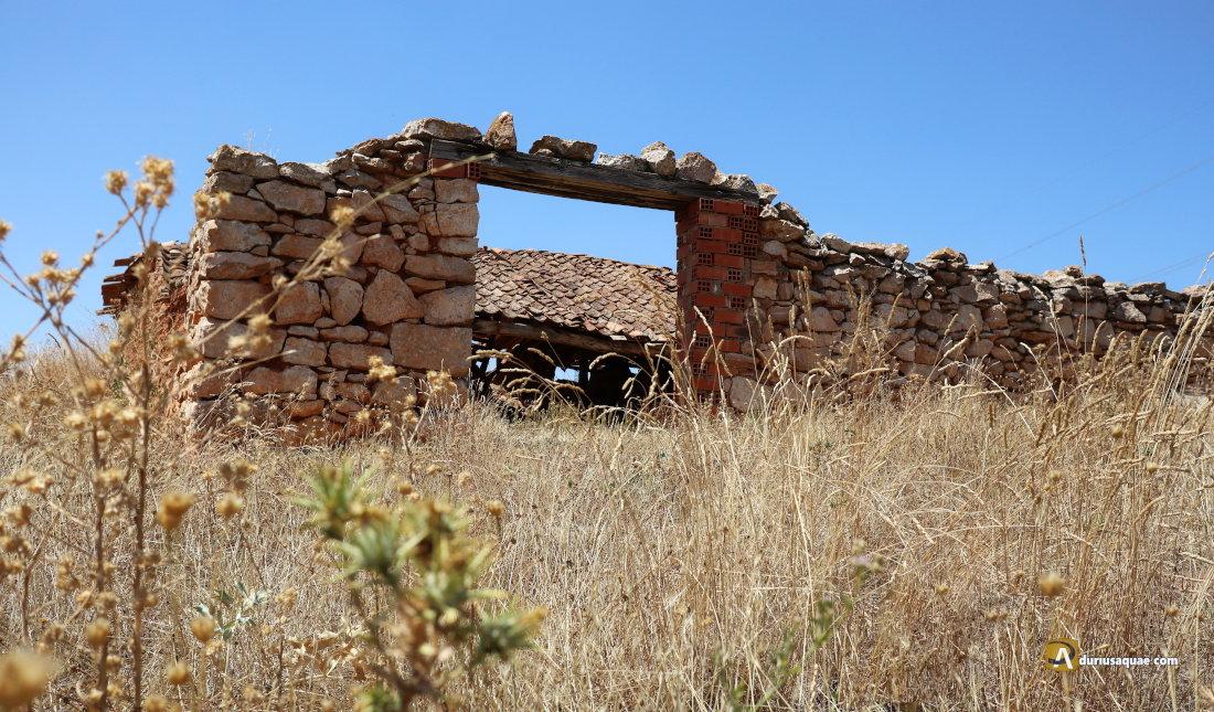 Durius Aquae:Pedraja de San Esteban, Soria