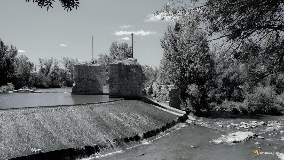 San Miguel del Pino, Valladolid