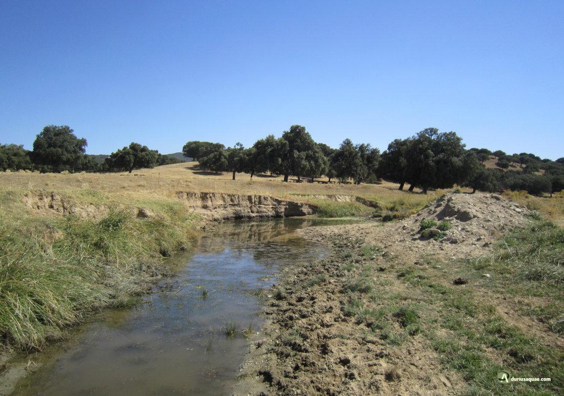 Charca en un recodo del río Almar