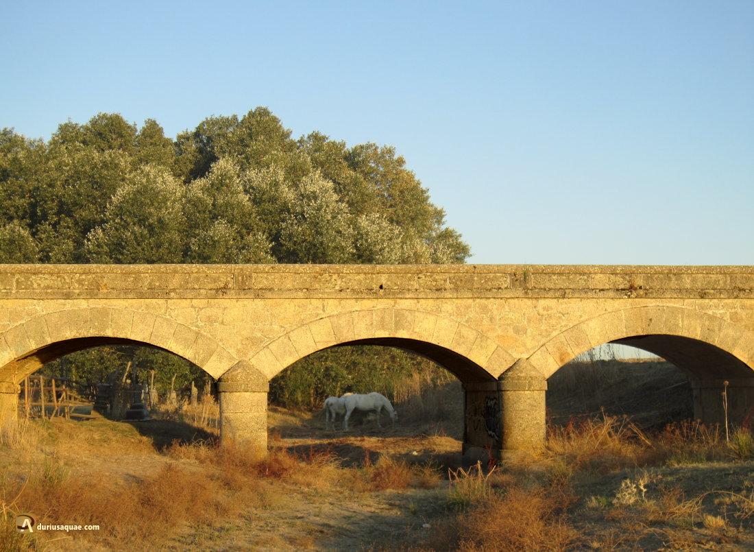 Puente sobre el río Almar