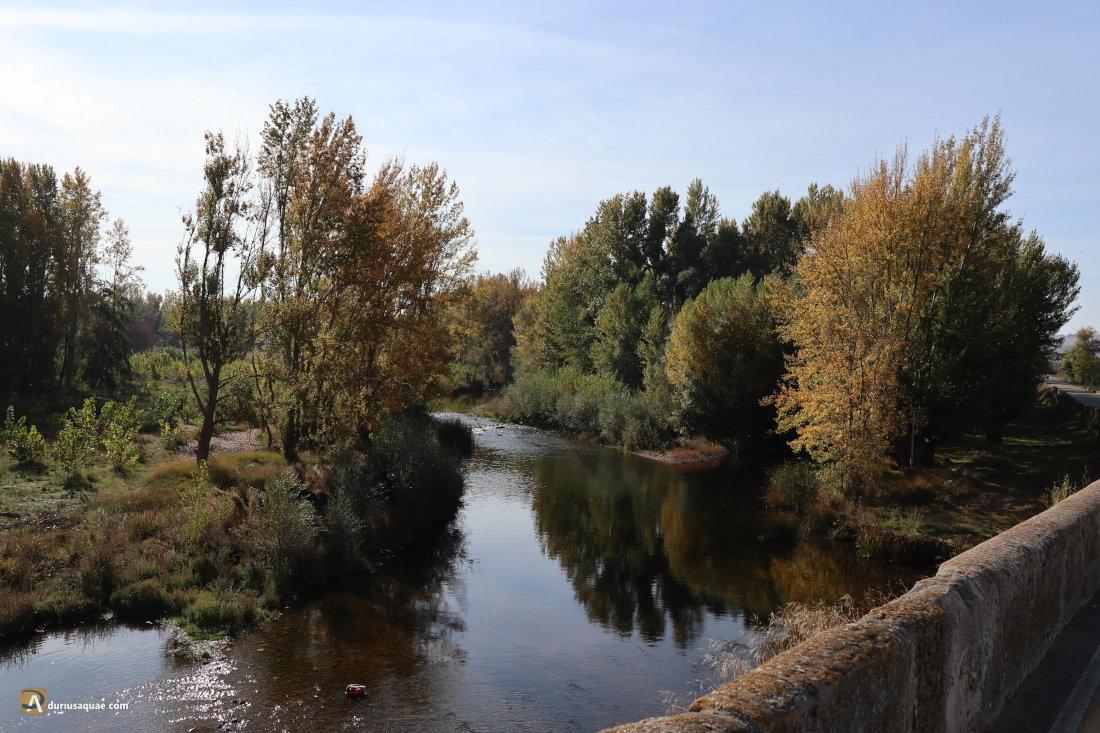 río Arlanza