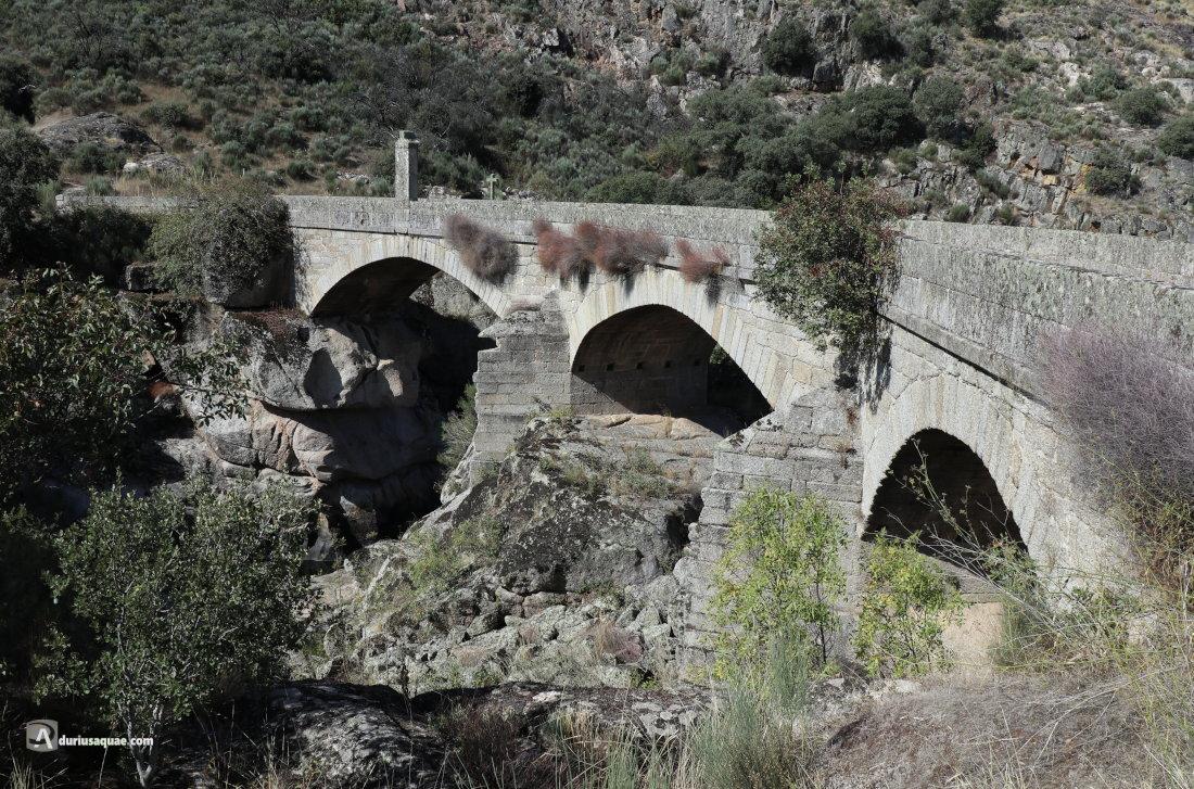 Durius Aquae: Puente Grande del Coa