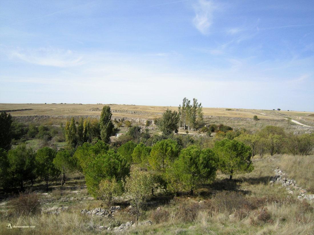 Isarrubi, Valladolid