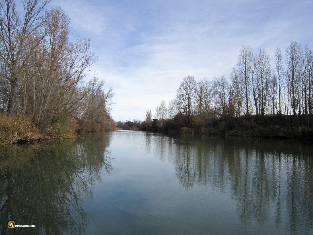 Río Duero, San Martín de Rubiales
