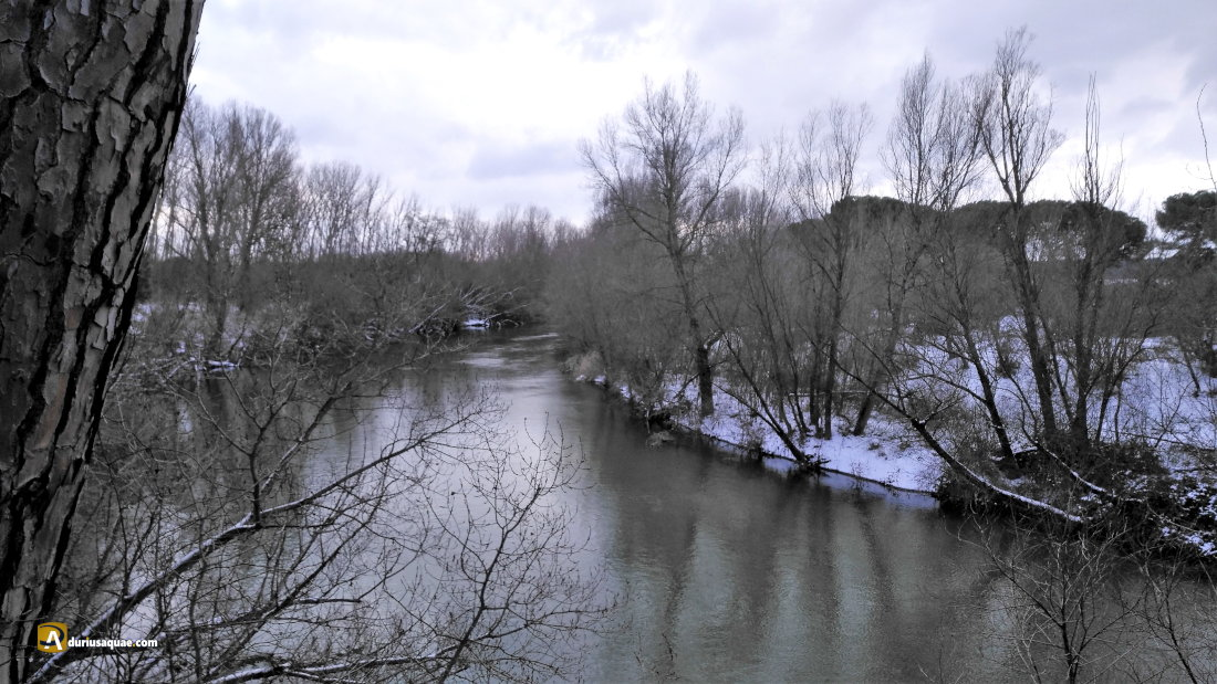 Río Duero nevado