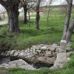 Fuentes en Tiedra: San Pedro