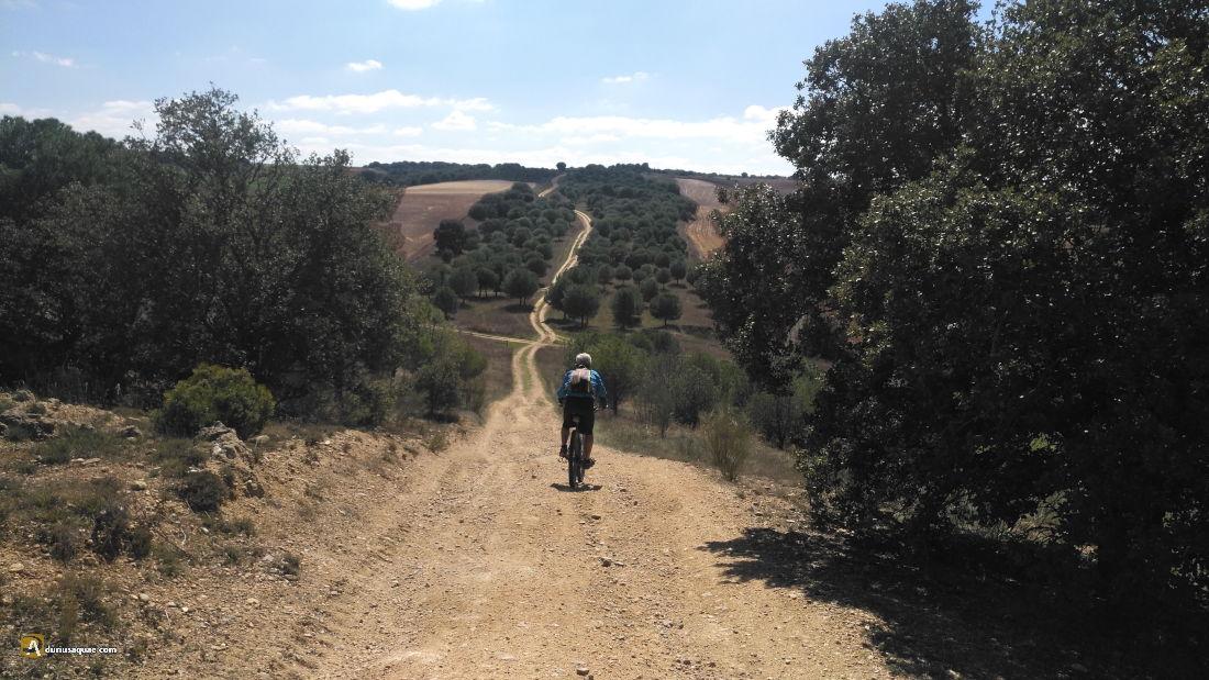 Cañada de Tordesillas a Vadillo de la Guareña