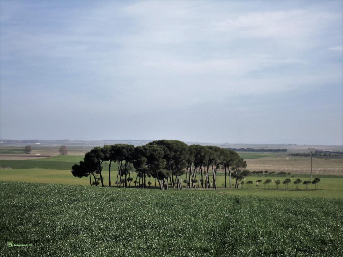 Valle del Zapardiel en la Moraña