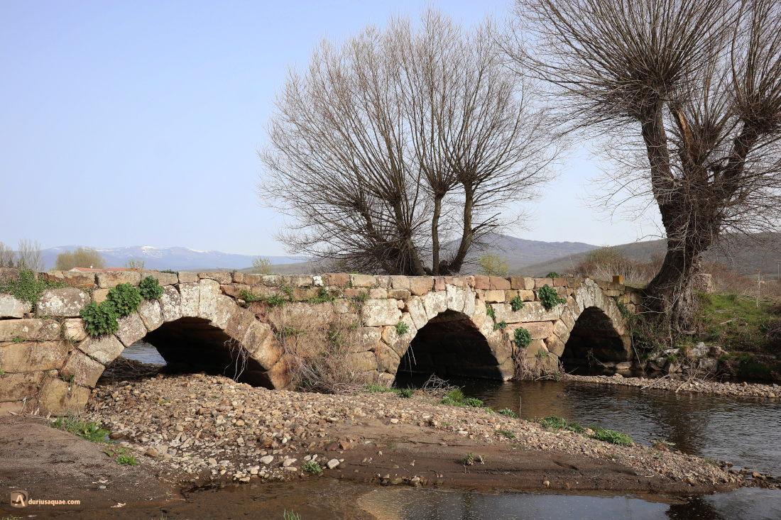 Puente romano en Nestar, Palencia