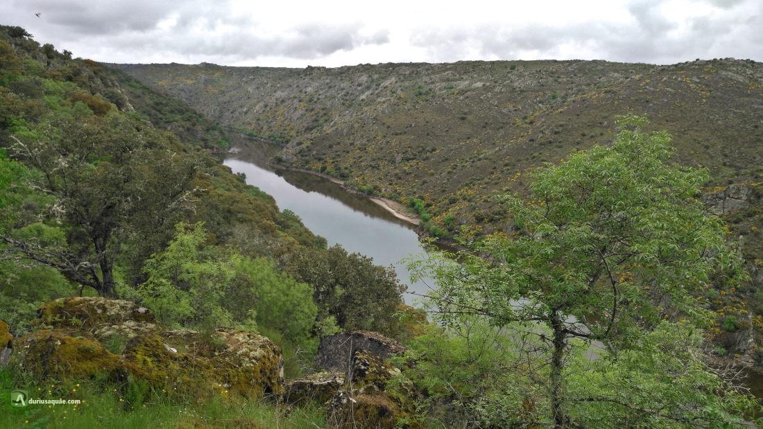 El río Duero en Sayago