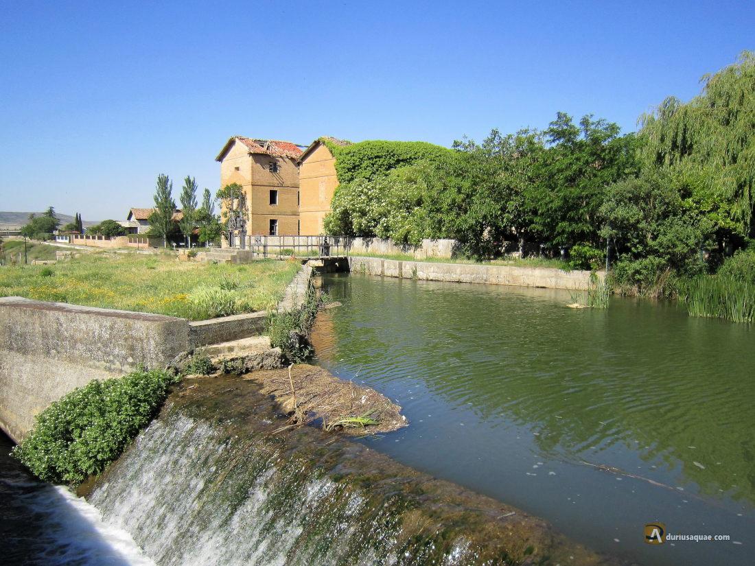 Grijota, Canal de Castilla