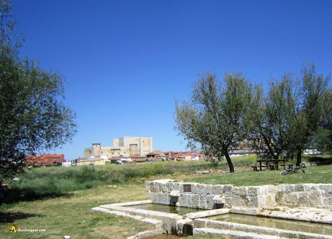 Fuentes de Valdepero, castillo