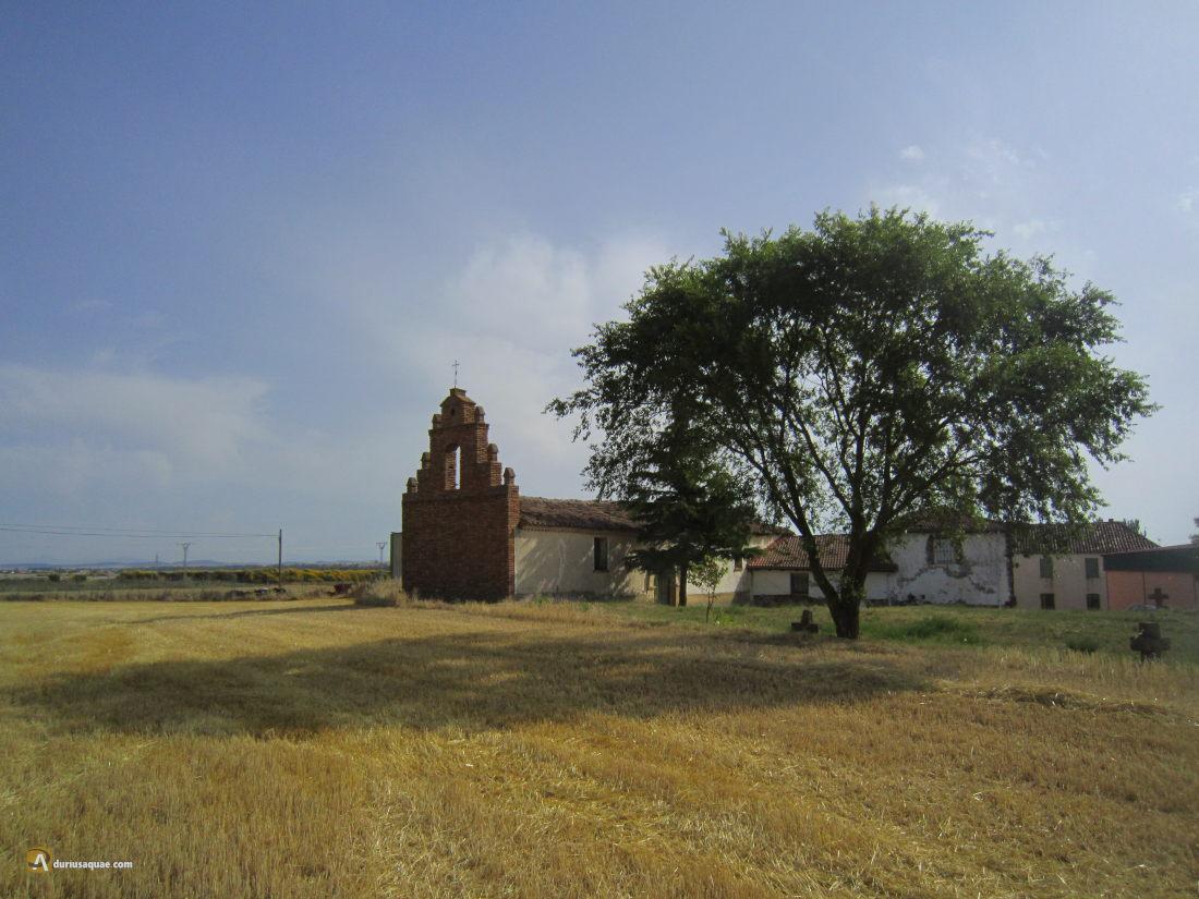 Ermita de San Juan, San Mamés de Campos