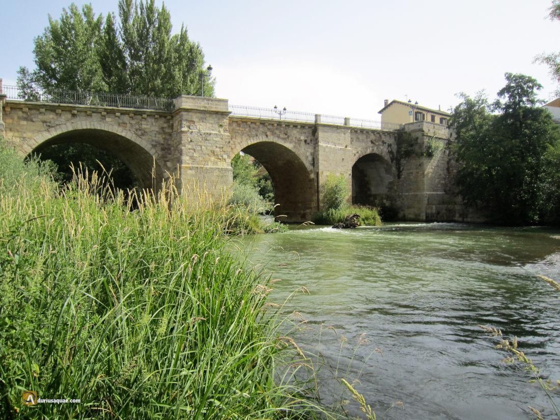 Carrión de los Condes, puente