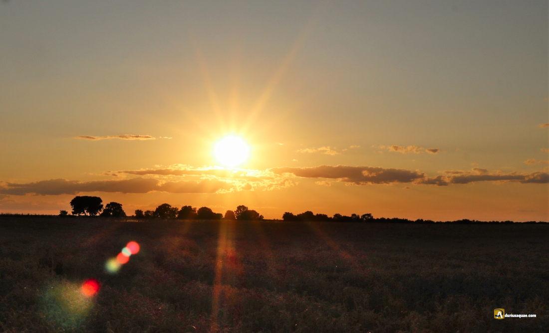Puesta de sol en el páramo junto al Duero. Villavaquerín