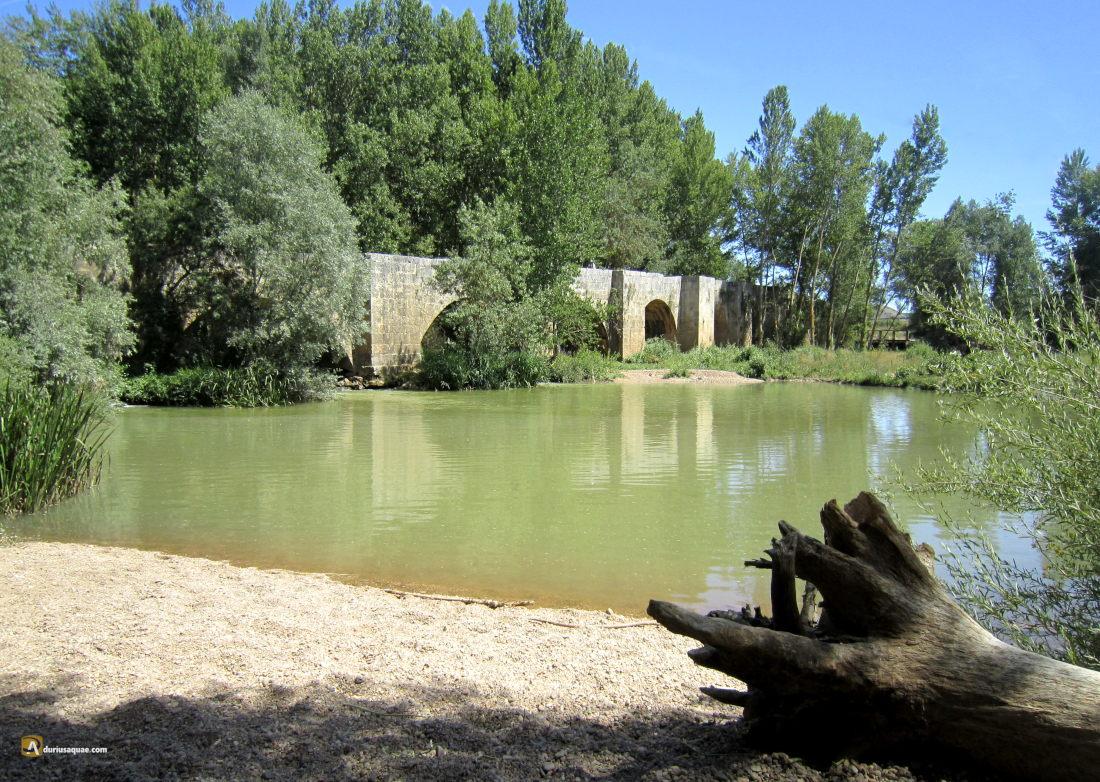 Puente viejo de Astudillo