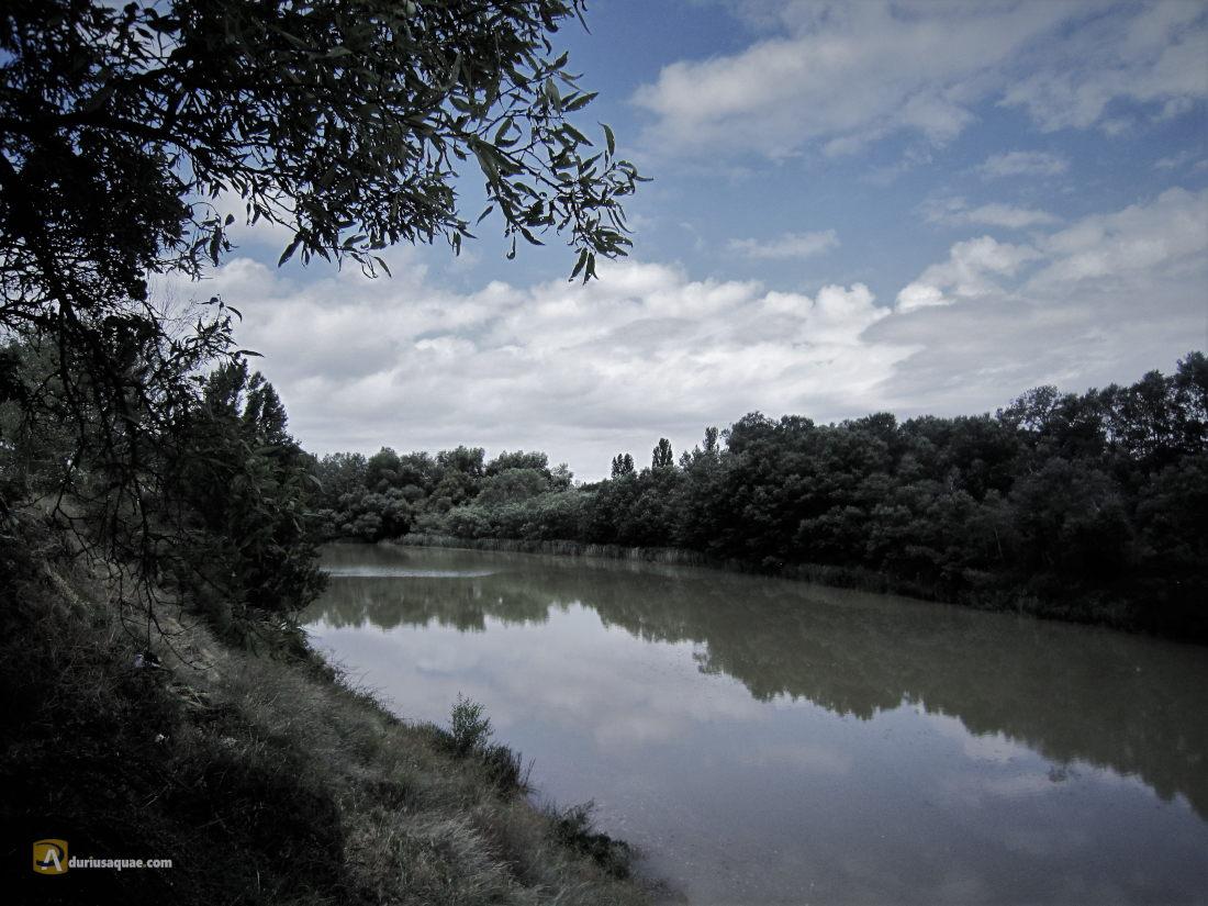 El Duero en Burgos