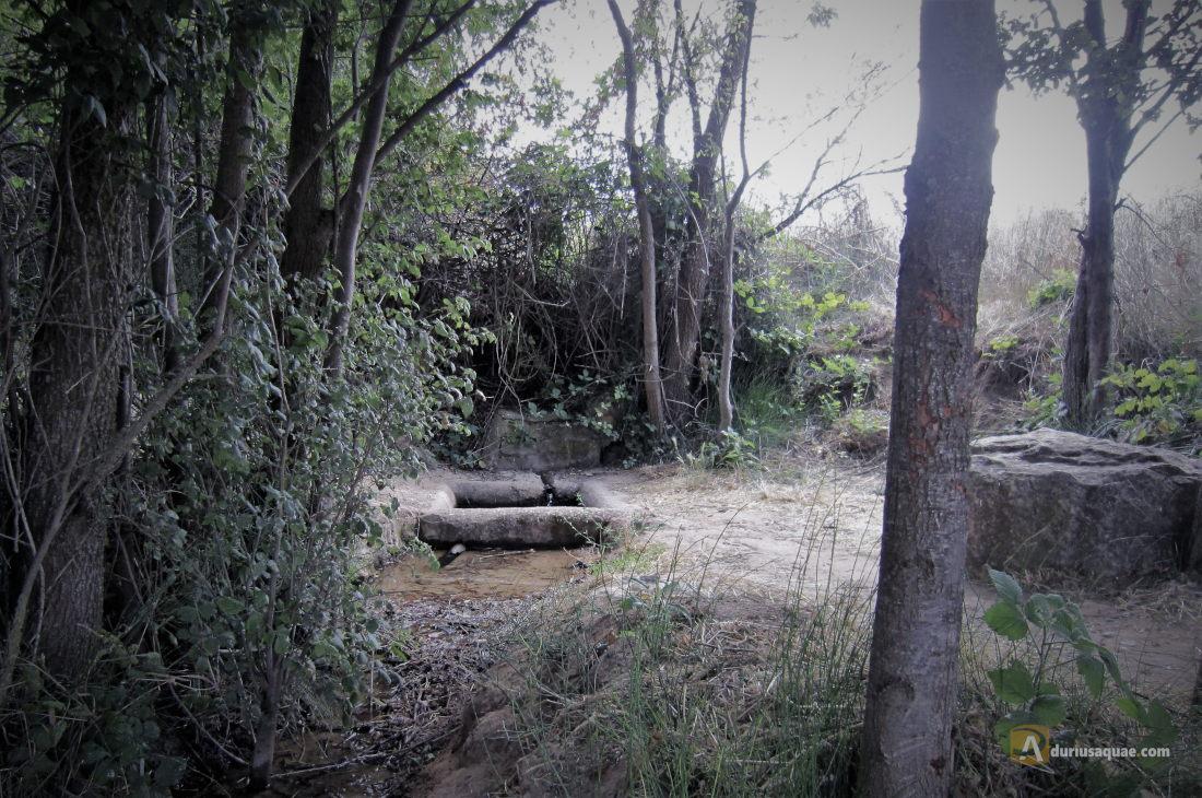 La fuente de la Hontanilla
