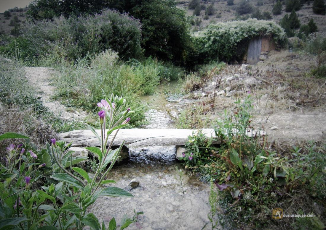 Puente sobre el regato de la Cueva de la Zorra. Castillejo de Robledo
