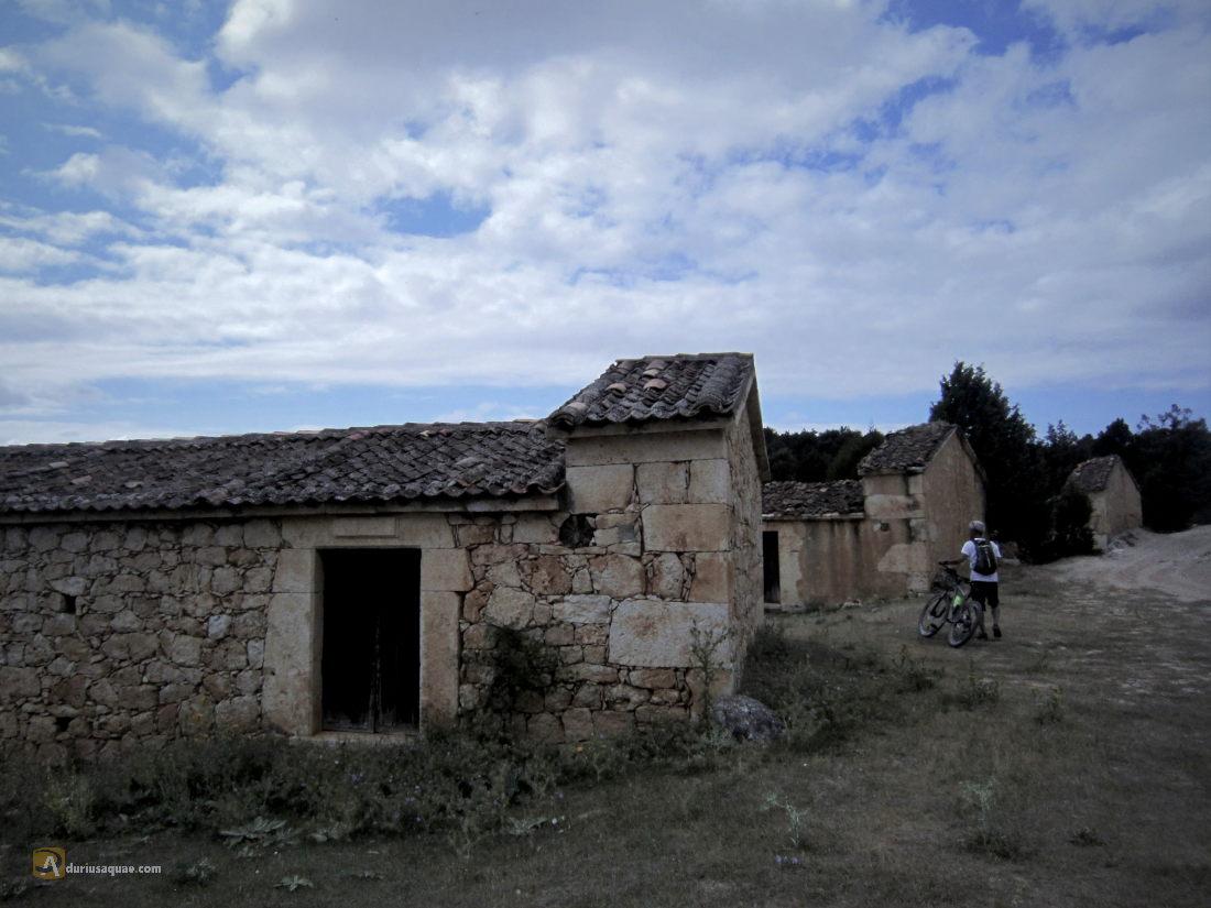 Castillejo de Robleda. Lagares