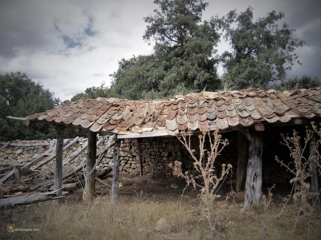 Tenadas en Castillejo de Robledo