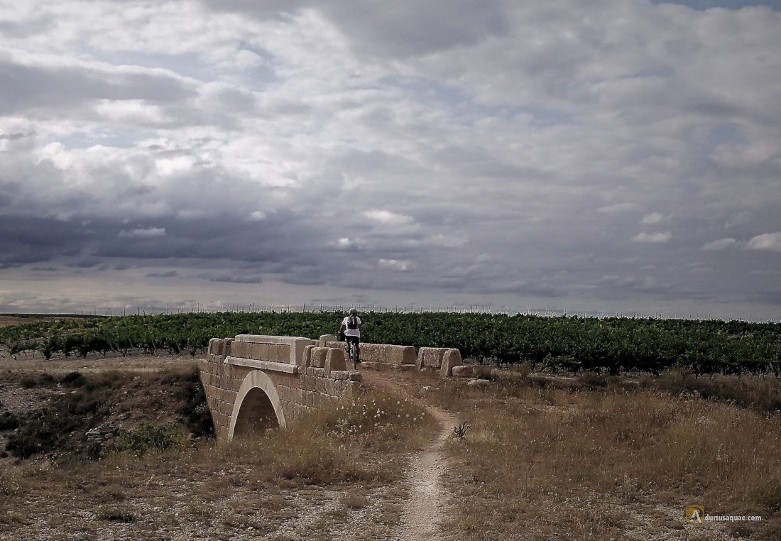 Puente para la cañada real de Merinas en Santa Cruz de la Salceda