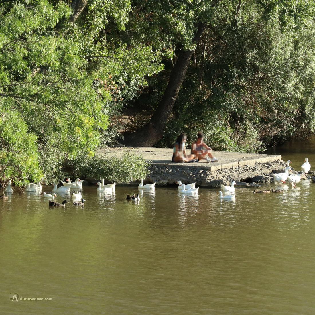 Descanso y relax junto al río Pisuerga, Valladolid