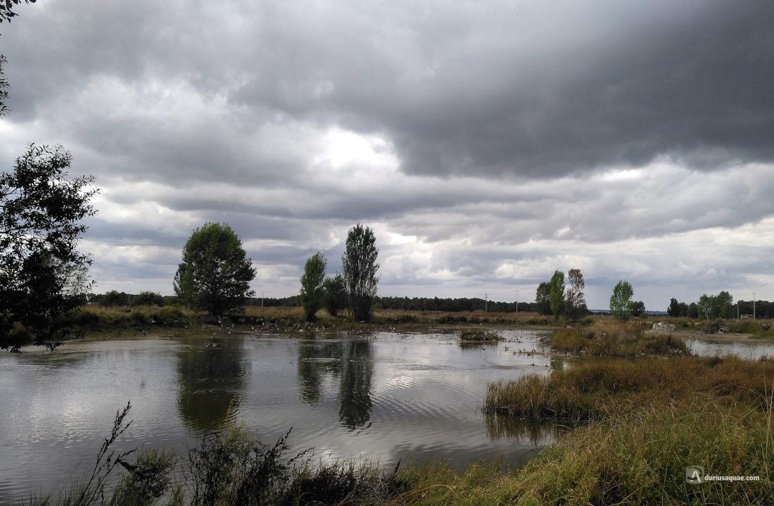 Laguna Adobera. Arroyo de Cuellar, Comarca del Carracillo